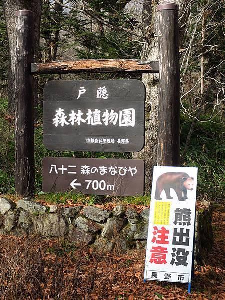 Togakushi b4.JPG