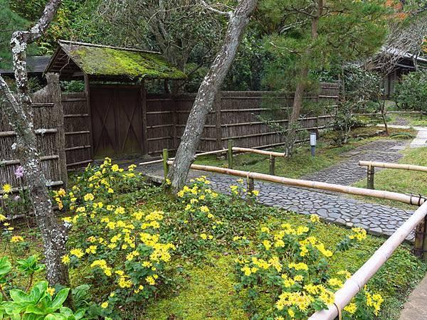 Kamakura j4.JPG