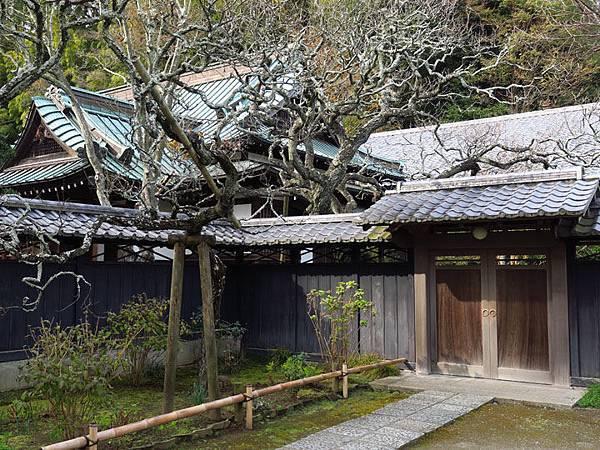 Kamakura j1.JPG