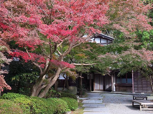 Kamakura l2.JPG