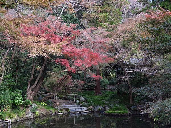 Kamakura l7.JPG