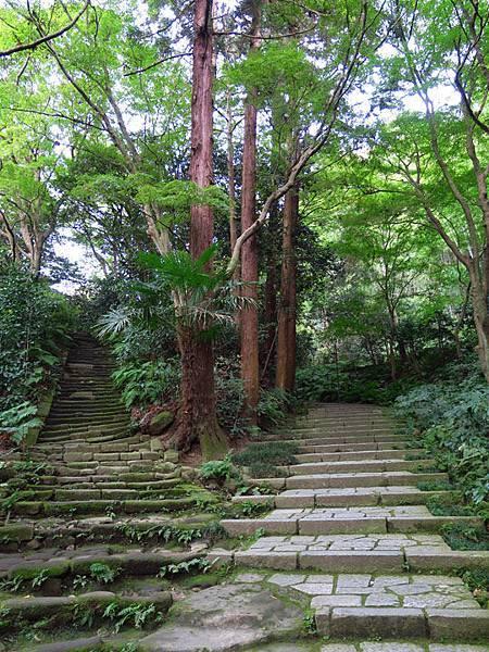 Kamakura m2.JPG