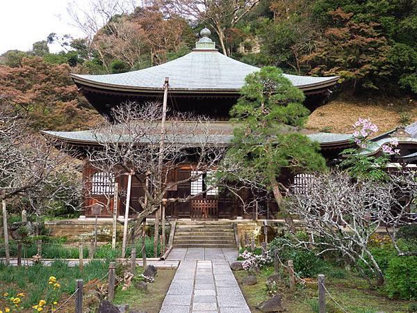 Kamakura m4.JPG