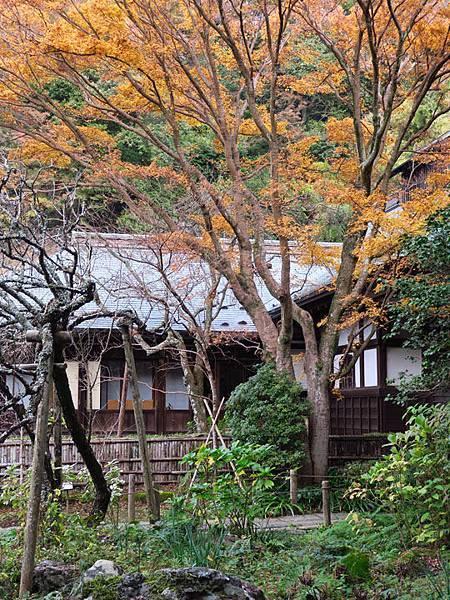 Kamakura m7.JPG