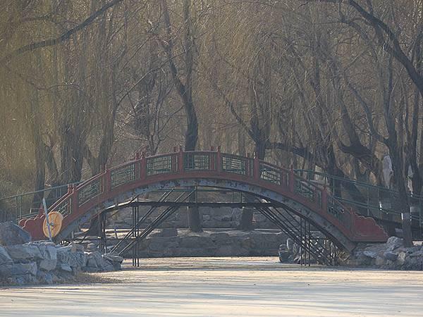 Yuanmingyuan c5.JPG