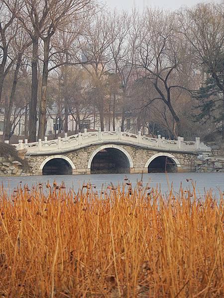 Yuanmingyuan c6.JPG
