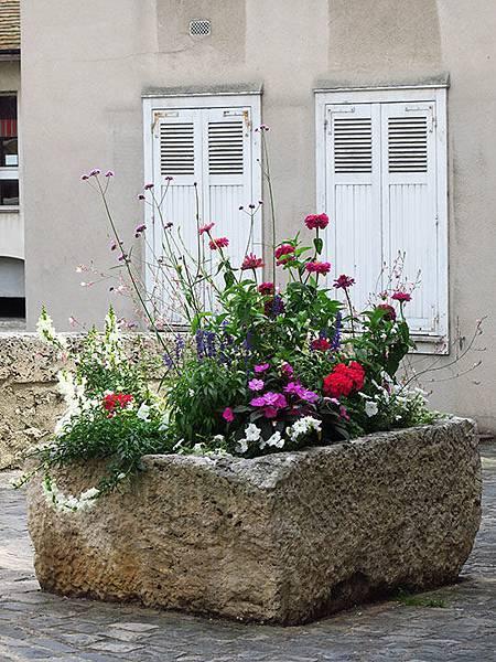 Chartres f6.JPG