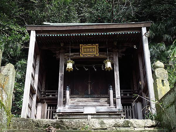 Tsuruga d1.JPG