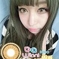 Winni-DODO 嘟嘟 混血三色檸檬金棕色~12