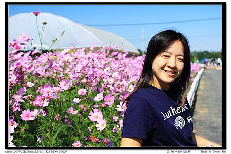 2013台中國際花毯節