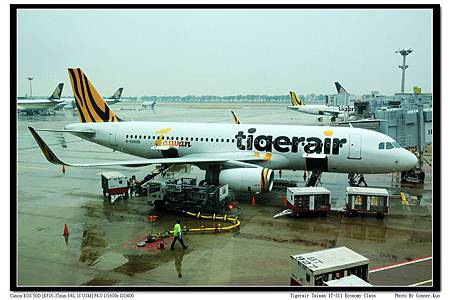 Tigerair Taiwan IT-511 Economy Class