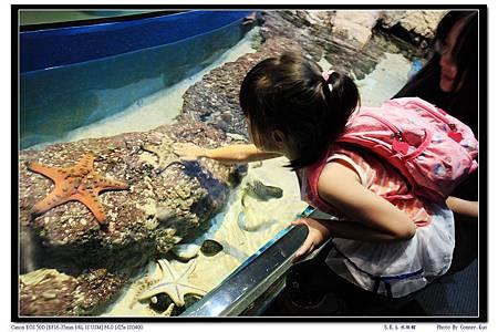 S.E.A.水族館