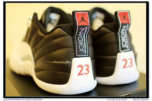 Air Jordan 12 Low Playoff