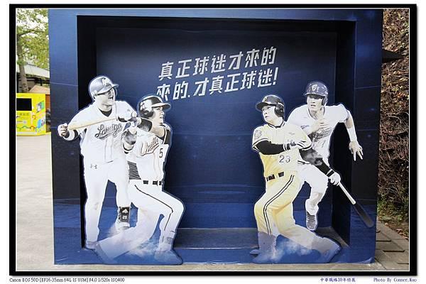 中華職棒30年特展