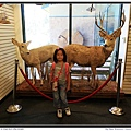 Big Bear Discovery Center