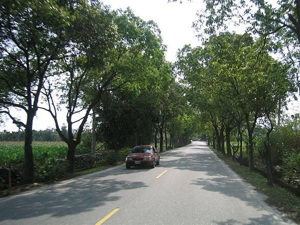 台九線舊道-往文蘭與銅門必經之路