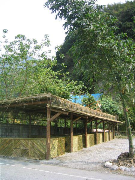慕谷慕魚生態旅遊區一景-還搞不清楚這可以做啥