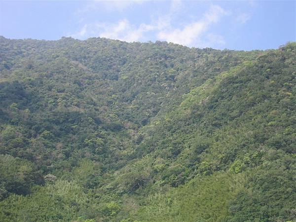 和平衛生室對面的山相