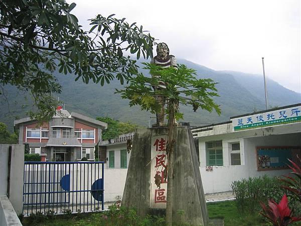 社區碑-木瓜樹長的位置真是妙