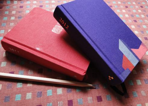 2012 diary.jpg