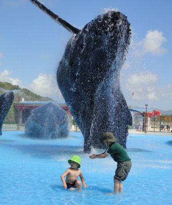whale-2b.jpg