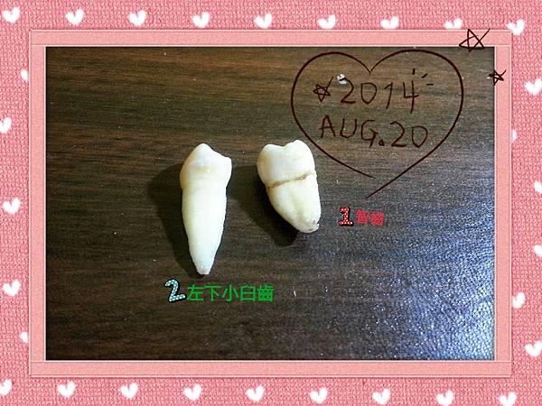 2014-08-20-21-35-29_deco.jpg