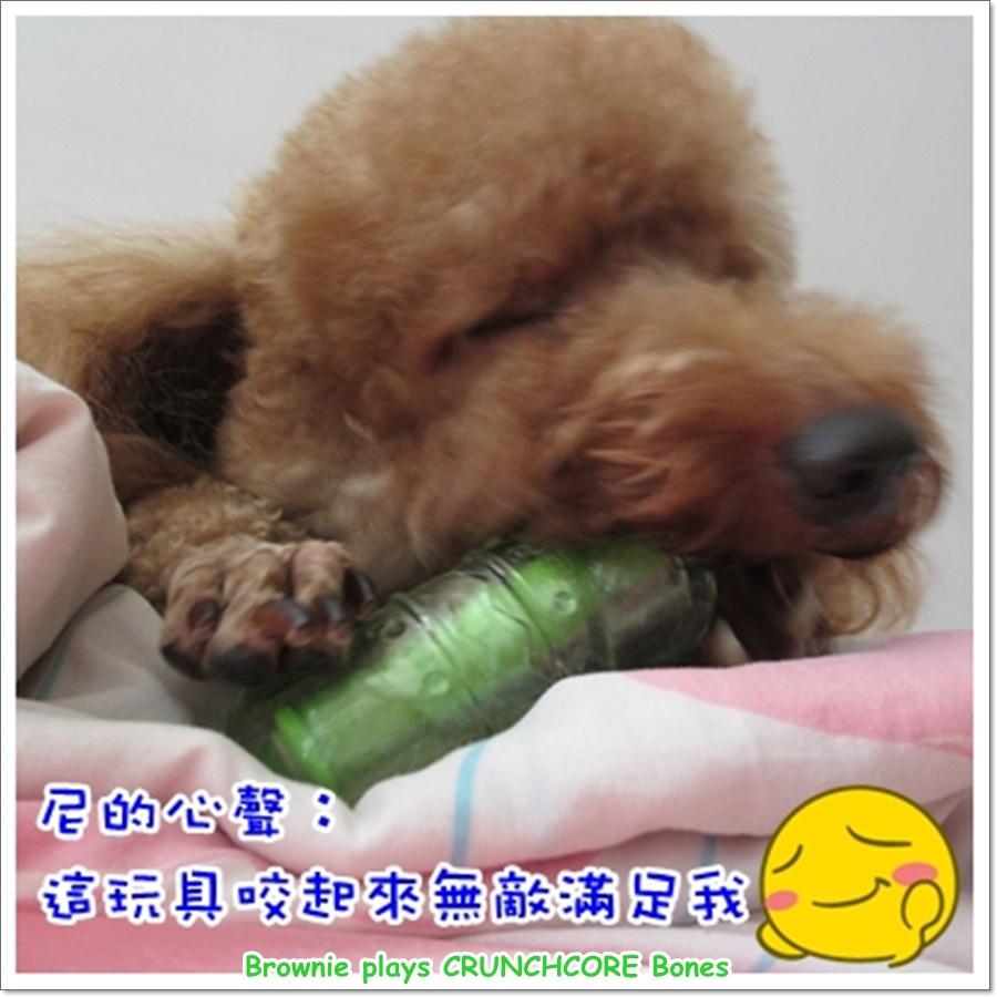 玩具5.jpg