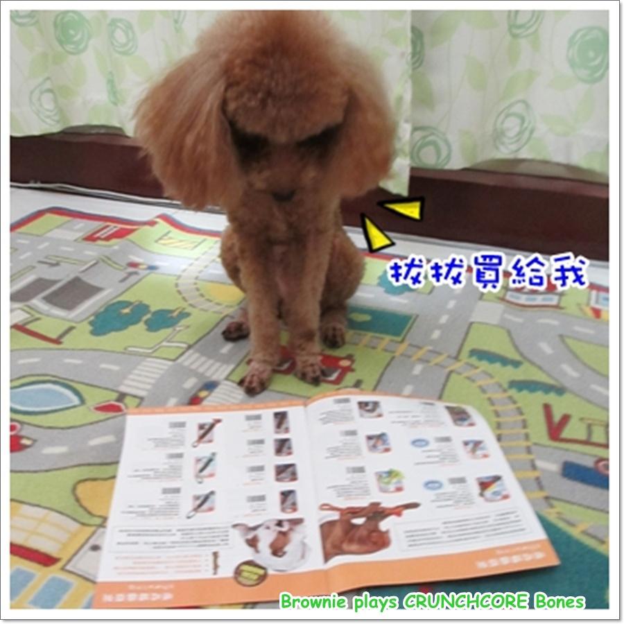 玩具14.jpg