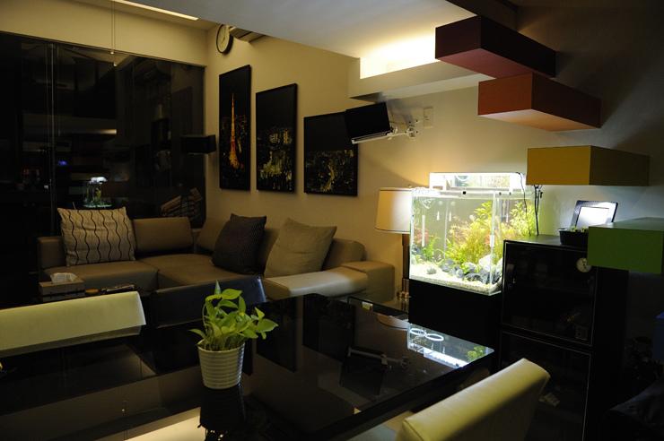 2017-04-30 讓魚缸成為家中的亮點吧!