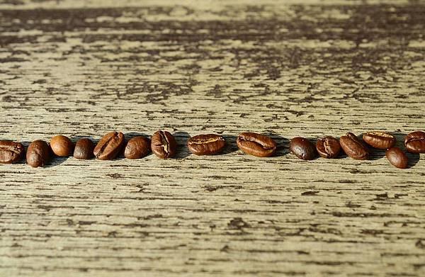 coffee-beans-1248342_960_720.jpg