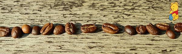 coffee-beans-1248342_960_720_meitu_1.jpg