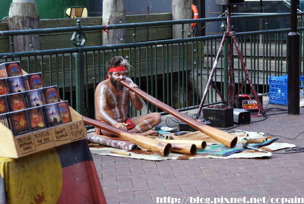 非常不像的毛利人