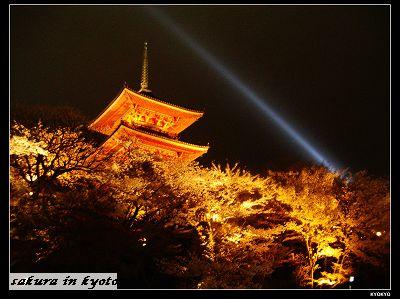 2005.4清水寺の夜桜