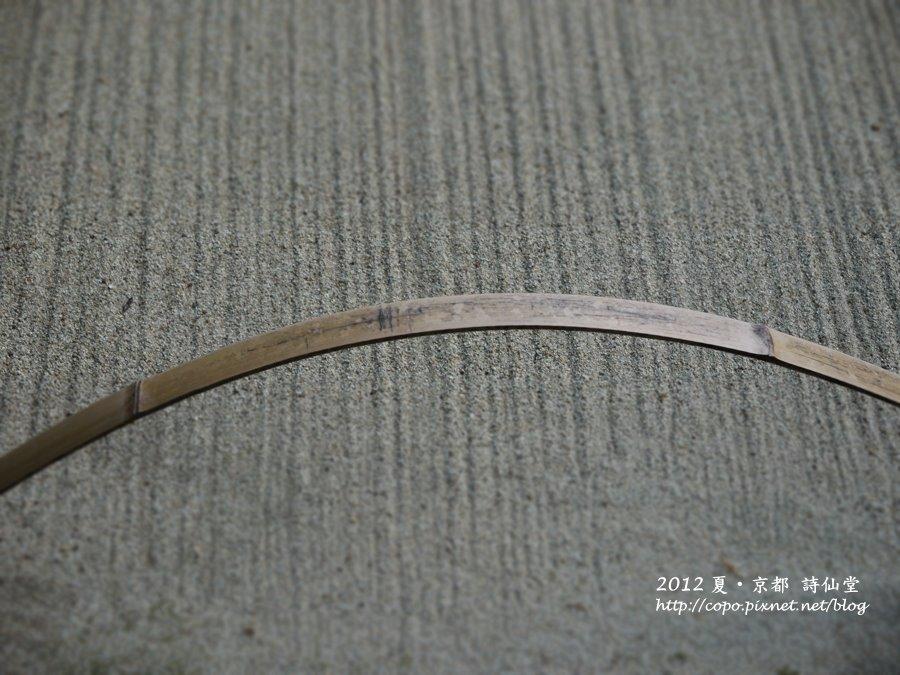P1010604.JPG