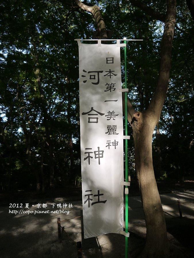 P1010693.JPG