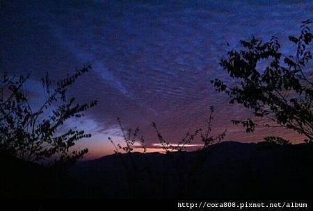 120211_鳥嘴山 - 052.jpg