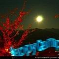 120211_鳥嘴山 - 051.jpg