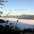 20120311-p9y3hpesfcer5ark4ufra2k7tq