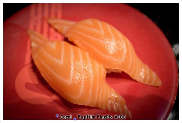 珊瑚愛吃鮭魚