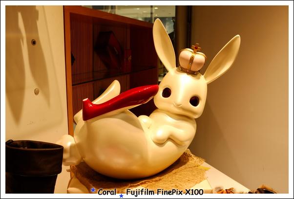紅鞋大兔子