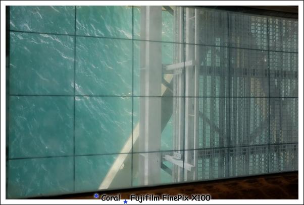 挖~~~透明的可以看到海