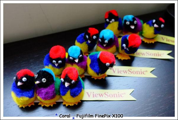 哈哈哈~~~我有很多新的三隻鳥啦!!