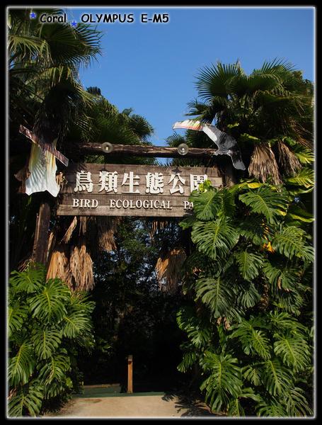 鳥類生態公園
