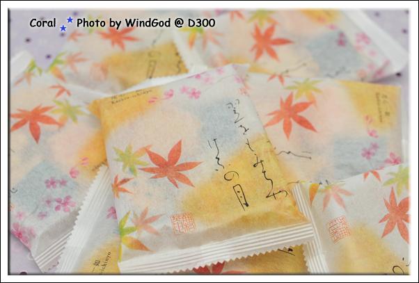 DSC_0902-1.jpg