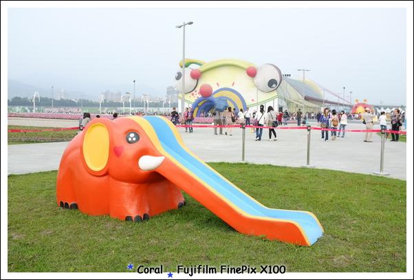 綠島大象遊台灣...搞不好牠比我去過的地方還多