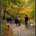 下公車後先下坡再開始爬山