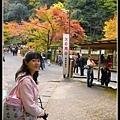 楓葉季京都景點到處都是人