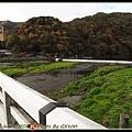 人滿為患的渡月橋