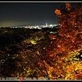 遠方的京都鐵塔閃閃發光