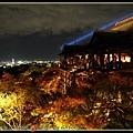 清水寺夜楓加夜景...讚到一個不行